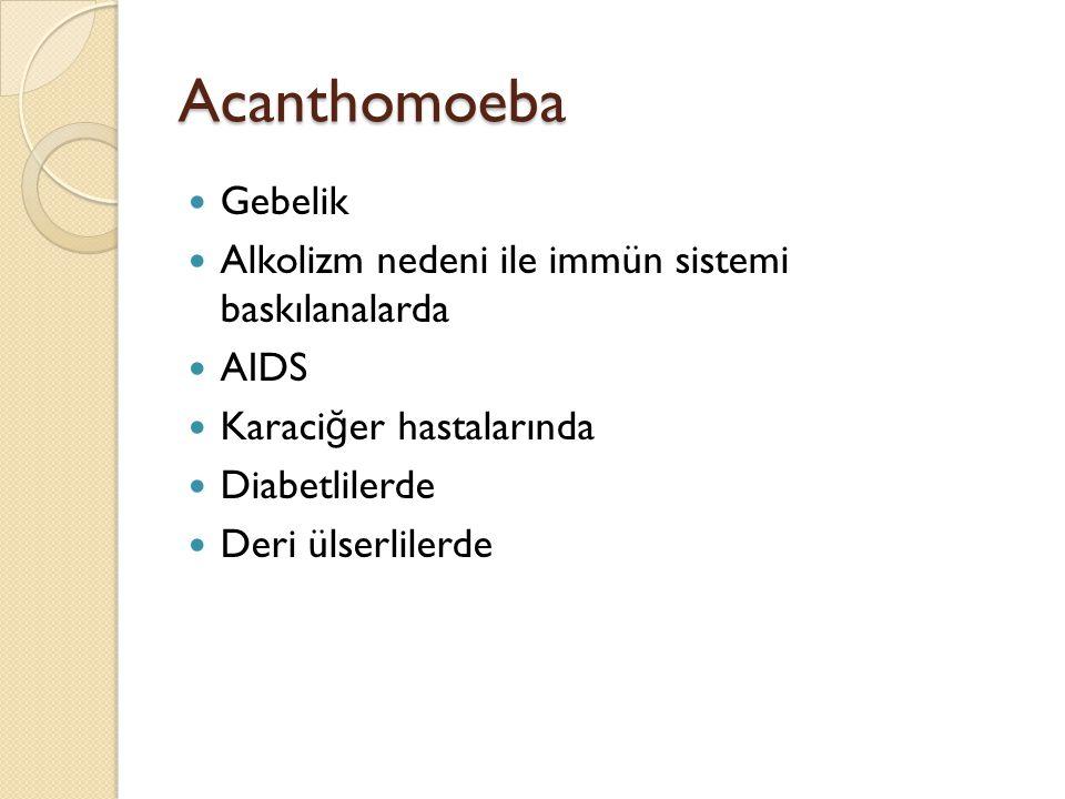 Acanthomoeba Gebelik Alkolizm nedeni ile immün sistemi baskılanalarda AIDS Karaci ğ er hastalarında Diabetlilerde Deri ülserlilerde