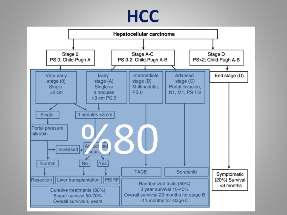 %80 HCC
