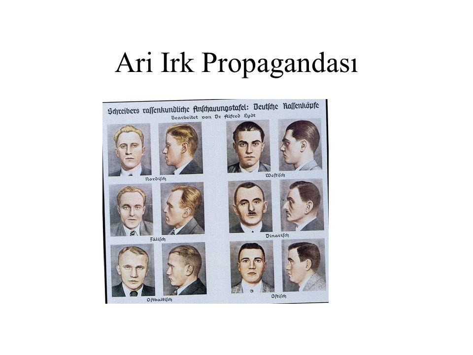 Ari Irk Propagandası