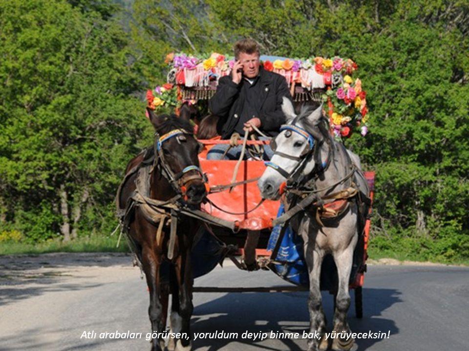 Atlı arabaları görürsen, yoruldum deyip binme bak, yürüyeceksin!
