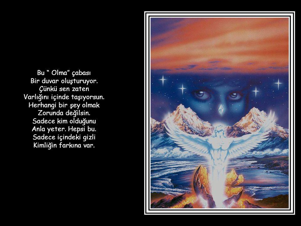 Bilgeliğin özü doğayla Uyum içinde olmaktır.Evrenin doğal ritmiyle Uyum içinde olmaktır.