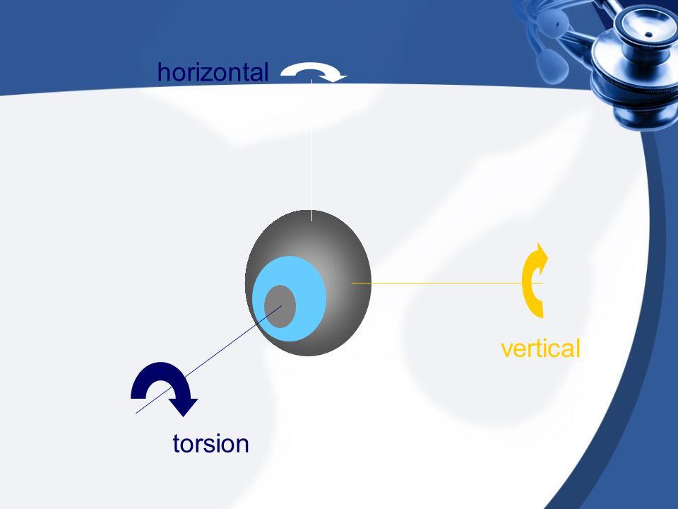 torsion horizontal vertical