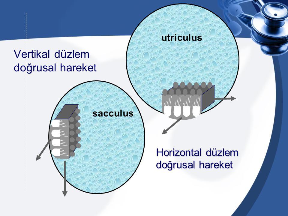 sağa vuran variable sola vuran Simetrik Nistagmus santral