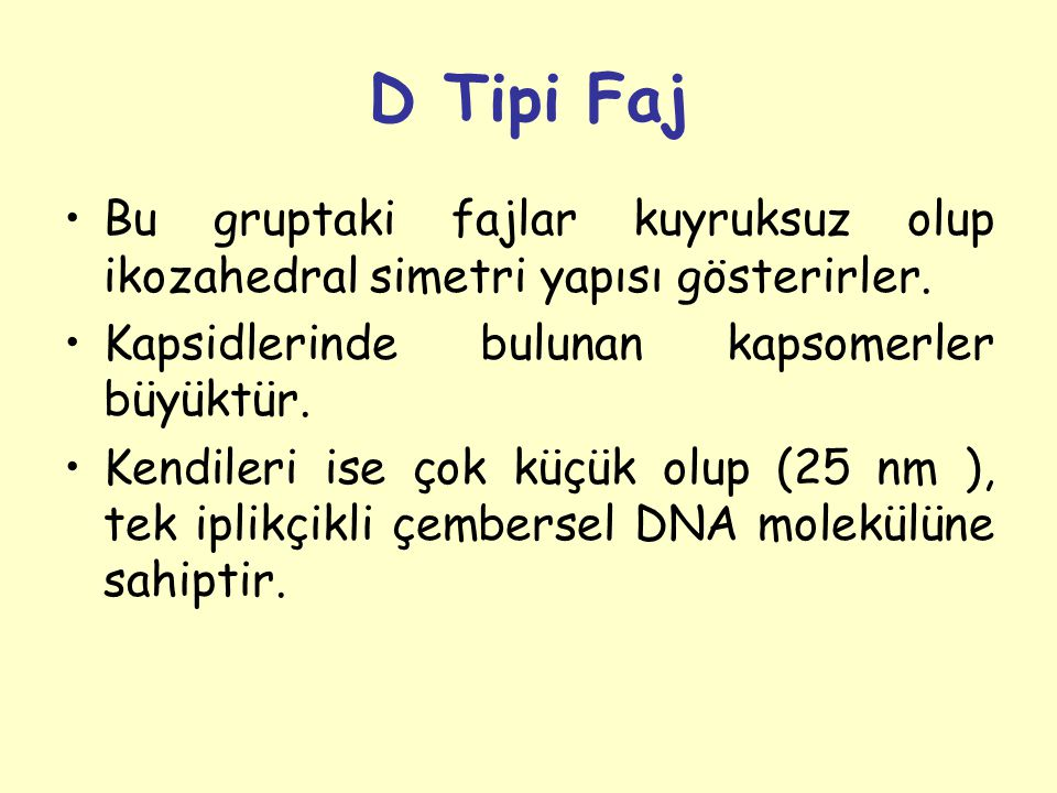 D Tipi Faj Bu gruptaki fajlar kuyruksuz olup ikozahedral simetri yapısı gösterirler.