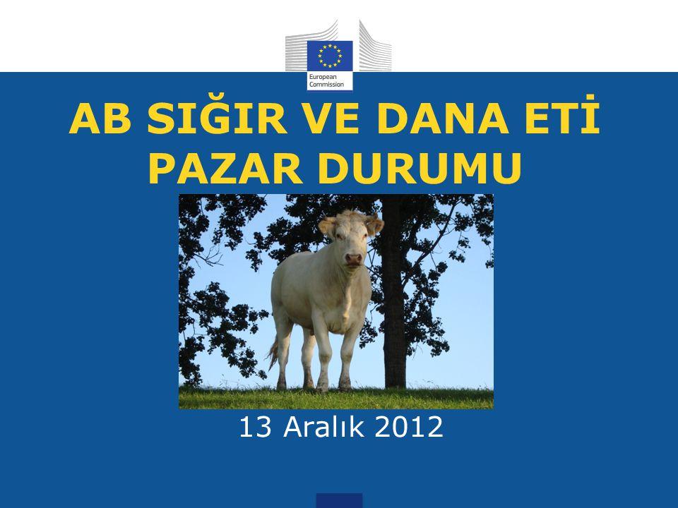 AB SIĞIR VE DANA ETİ PAZAR DURUMU 13 Aralık 2012