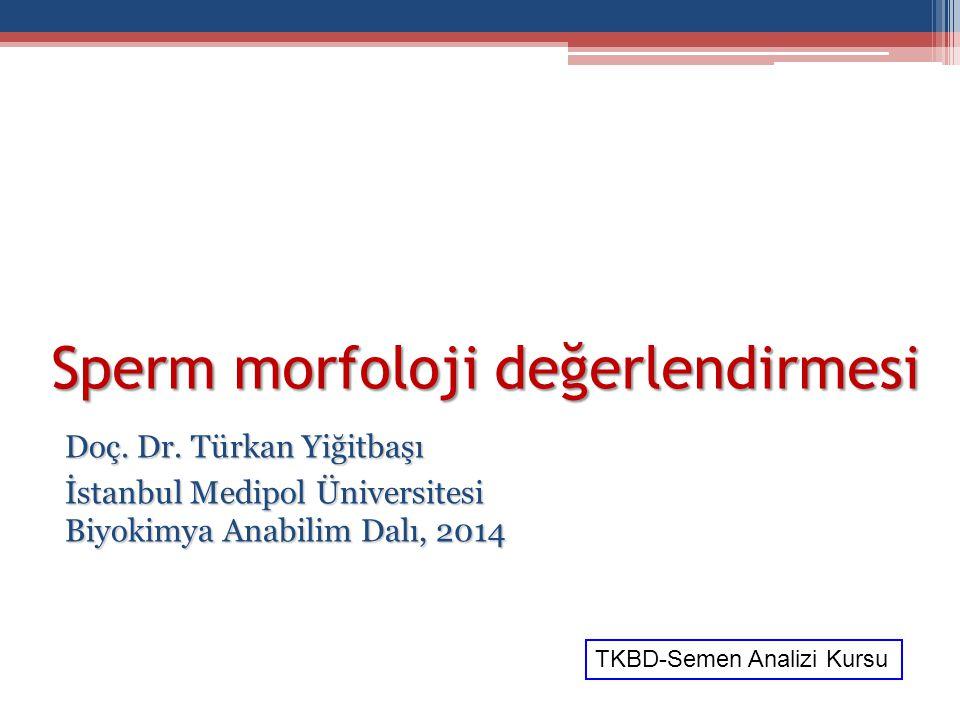 Sperm morfoloji değerlendirmesi Doç. Dr. Türkan Yiğitbaşı İstanbul Medipol Üniversitesi Biyokimya Anabilim Dalı, 2014 TKBD-Semen Analizi Kursu