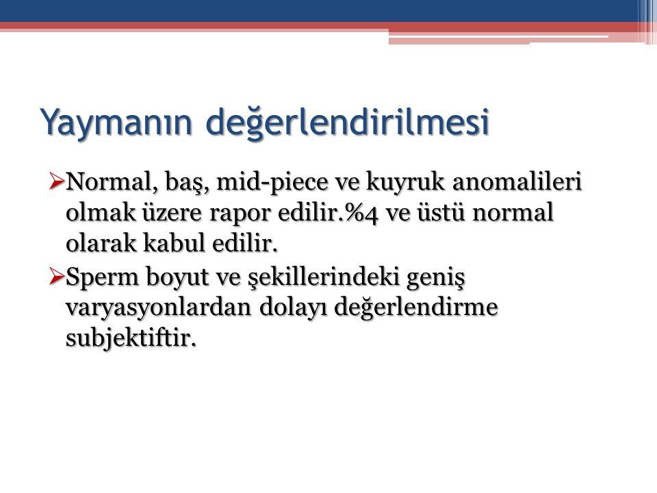 Yaymanın değerlendirilmesi  Normal, baş, mid-piece ve kuyruk anomalileri olmak üzere rapor edilir.%4 ve üstü normal olarak kabul edilir.  Sperm boyu