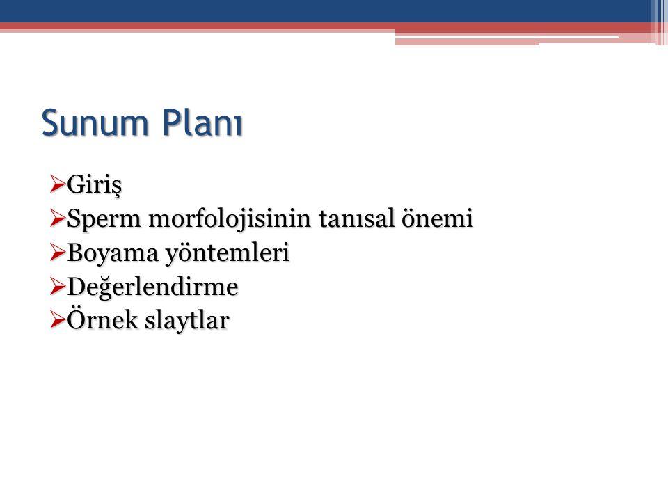 Sunum Planı  Giriş  Sperm morfolojisinin tanısal önemi  Boyama yöntemleri  Değerlendirme  Örnek slaytlar