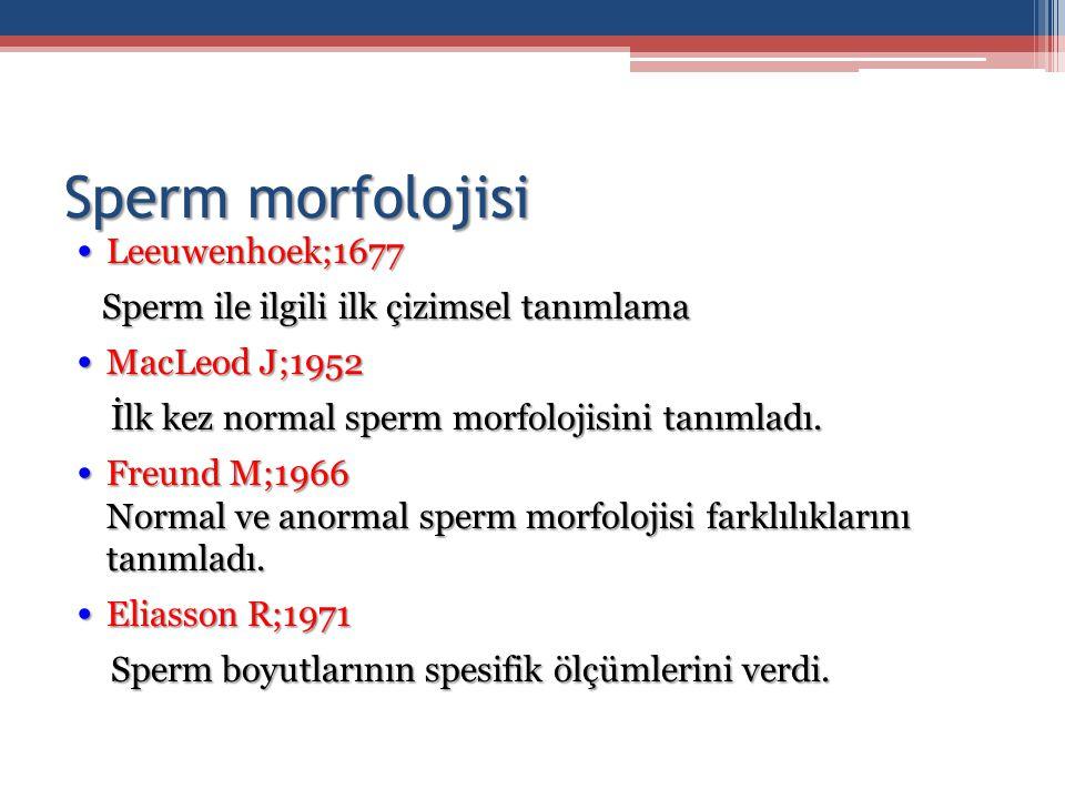 Sperm morfolojisi Leeuwenhoek;1677 Leeuwenhoek;1677 Sperm ile ilgili ilk çizimsel tanımlama Sperm ile ilgili ilk çizimsel tanımlama MacLeod J;1952 Mac