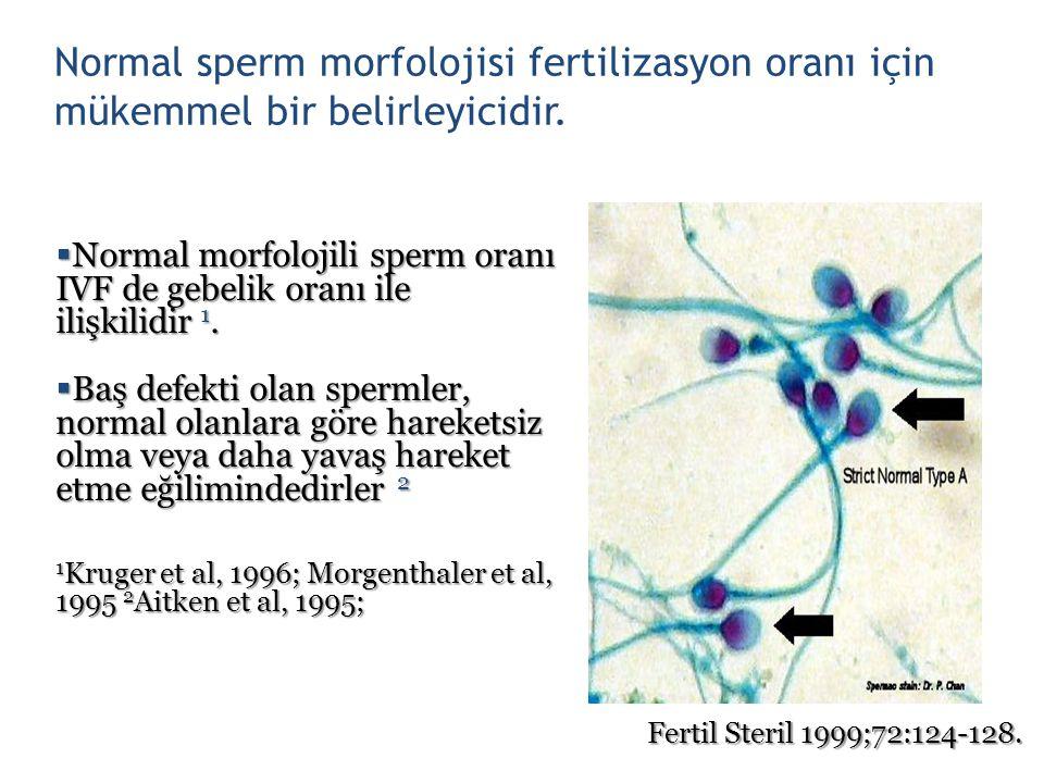Normal sperm morfolojisi fertilizasyon oranı için mükemmel bir belirleyicidir.  Normal morfolojili sperm oranı IVF de gebelik oranı ile ilişkilidir 1