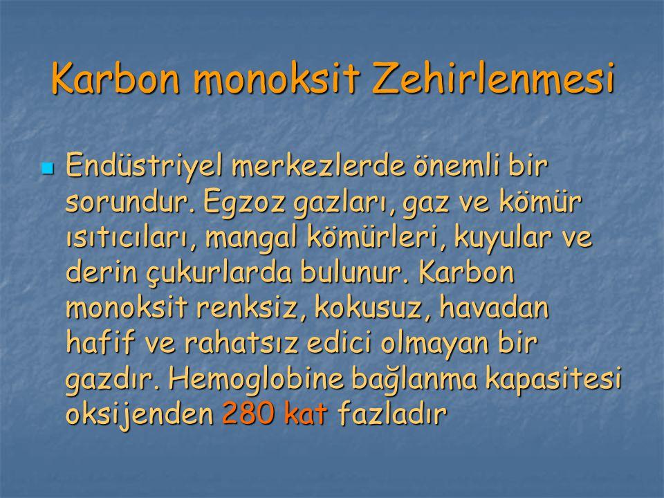 Karbon monoksit Zehirlenmesi Endüstriyel merkezlerde önemli bir sorundur. Egzoz gazları, gaz ve kömür ısıtıcıları, mangal kömürleri, kuyular ve derin
