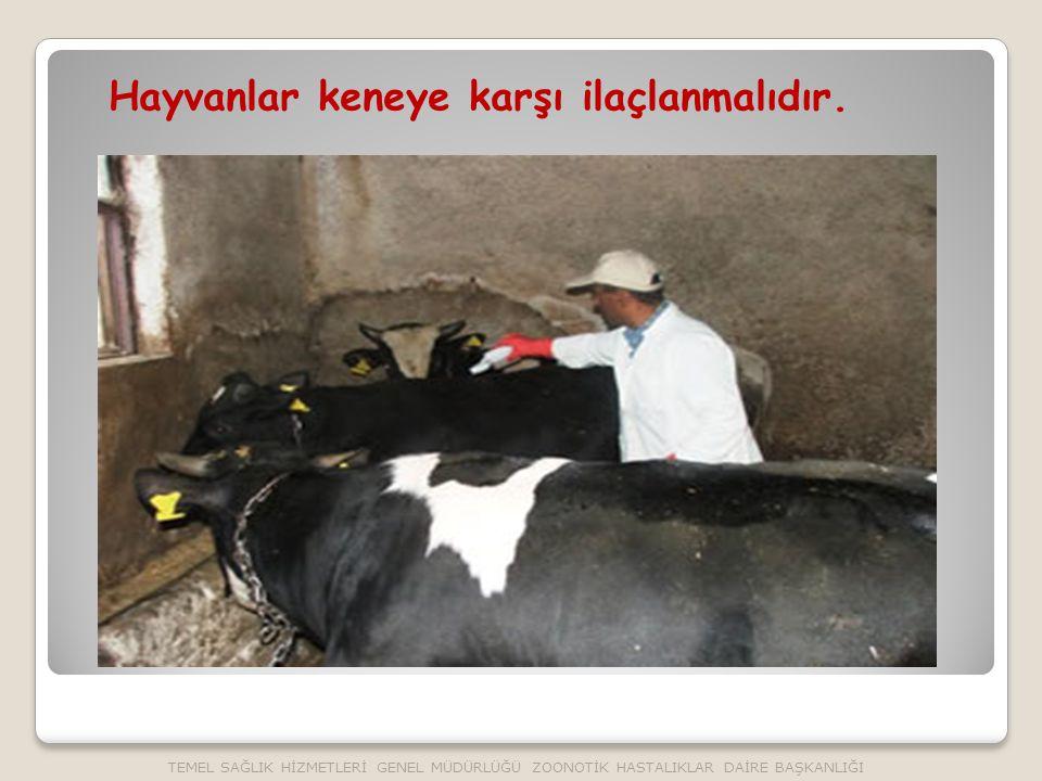 Hayvanlar keneye karşı ilaçlanmalıdır. TEMEL SAĞLIK HİZMETLERİ GENEL MÜDÜRLÜĞÜ ZOONOTİK HASTALIKLAR DAİRE BAŞKANLIĞI