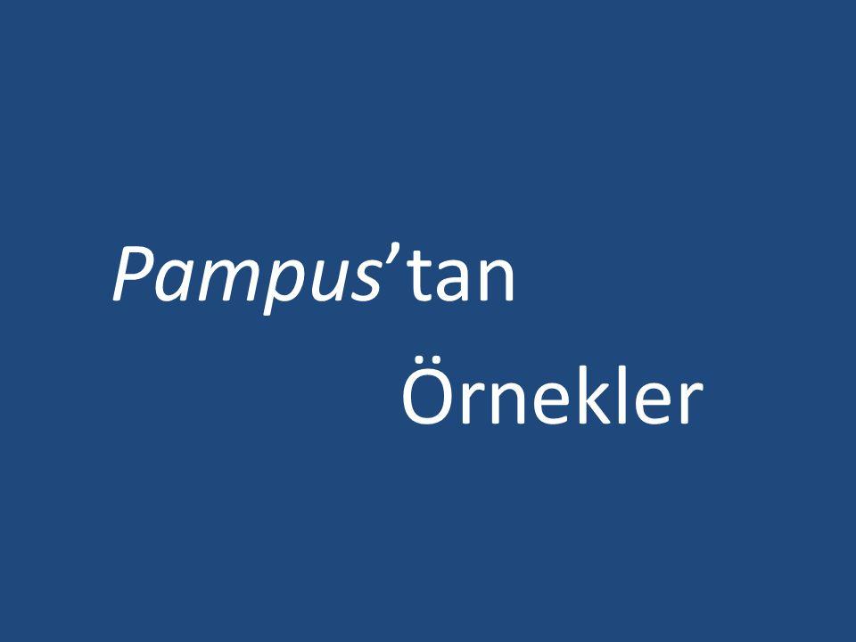 Pampus'tan Örnekler