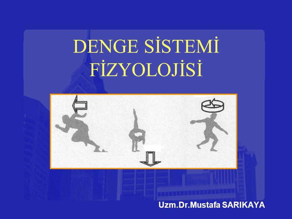 DENGE SİSTEMİ FİZYOLOJİSİ Uzm.Dr.Mustafa SARIKAYA