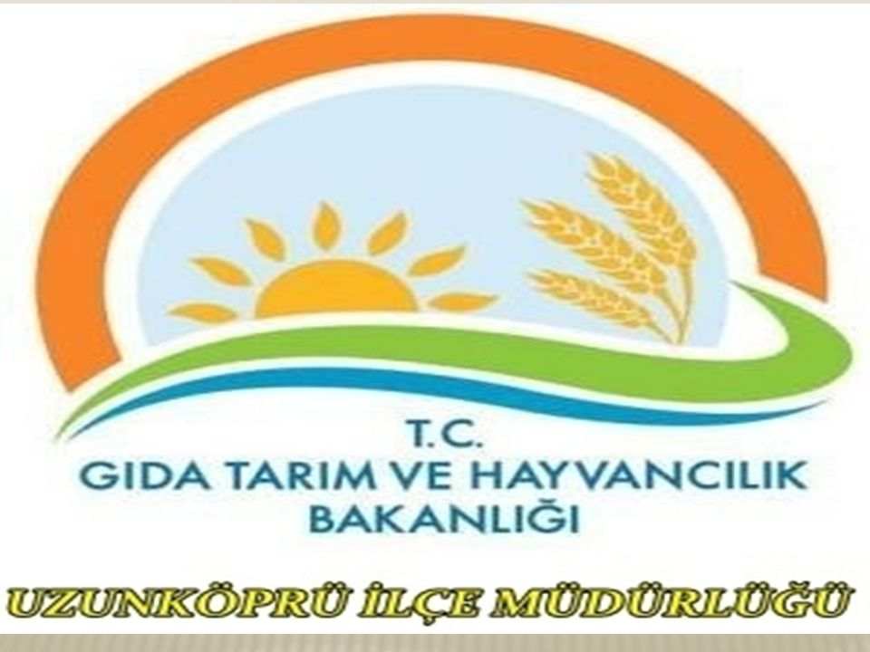 TARIMSAL 24 T.C. UZUNKÖPRÜ KAYMAKAMLIĞI Gıda Tarım ve Hayvancılık İlçe Müdürlüğü