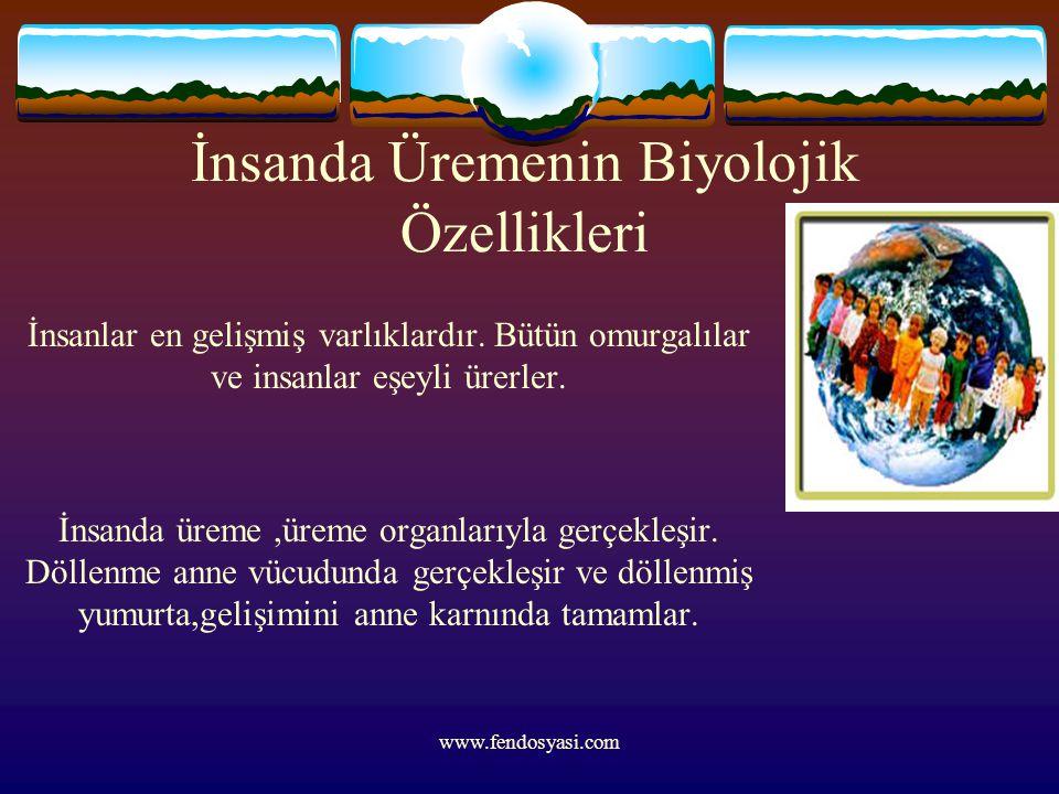 www.fendosyasi.com İnsanda Üremenin Biyolojik Özellikleri İnsanlar en gelişmiş varlıklardır. Bütün omurgalılar ve insanlar eşeyli ürerler. İnsanda üre