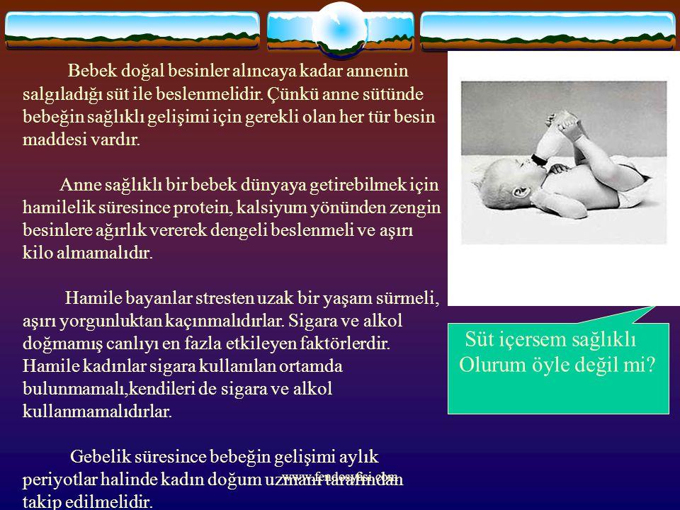 www.fendosyasi.com Bebek doğal besinler alıncaya kadar annenin salgıladığı süt ile beslenmelidir. Çünkü anne sütünde bebeğin sağlıklı gelişimi için ge