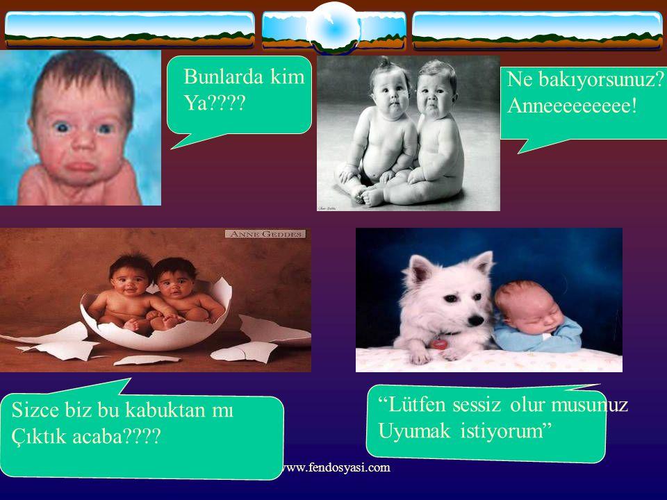 """www.fendosyasi.com Bunlarda kim Ya???? Ne bakıyorsunuz? Anneeeeeeeee! Sizce biz bu kabuktan mı Çıktık acaba???? """"Lütfen sessiz olur musunuz Uyumak ist"""