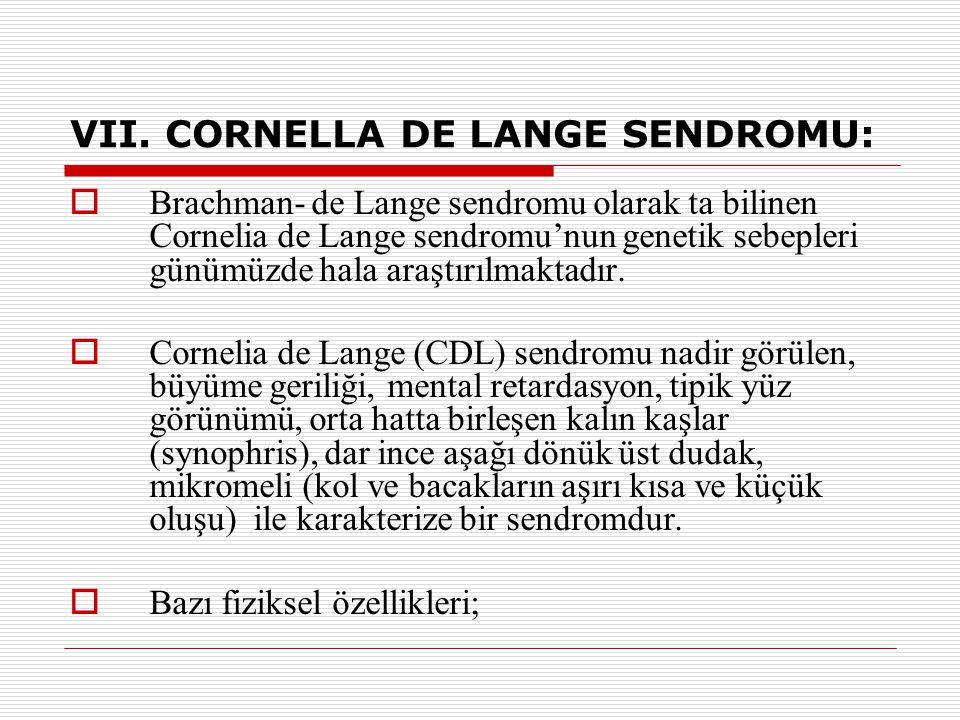 VII. CORNELLA DE LANGE SENDROMU:  Brachman- de Lange sendromu olarak ta bilinen Cornelia de Lange sendromu'nun genetik sebepleri günümüzde hala araşt