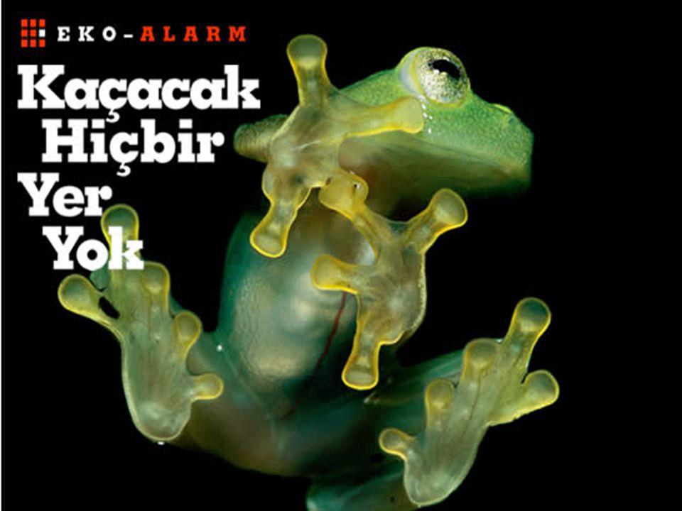 Türkiye karbondioksit gazı salınımında 1990 – 2004 yılları arasında % 72,6 artış kaydetti.