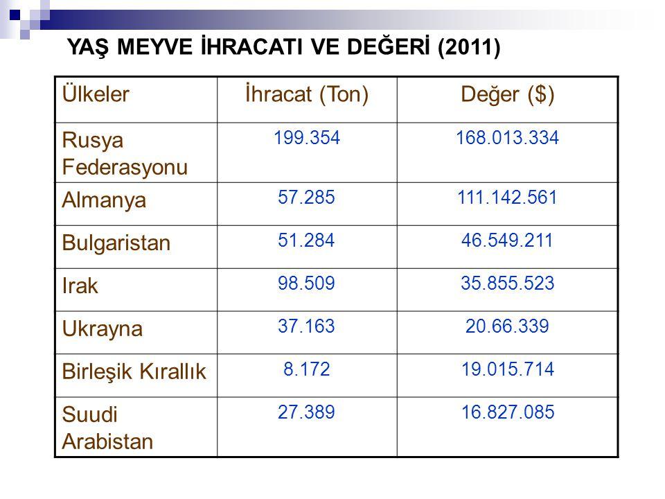 Ülkelerİhracat (Ton)Değer ($) Rusya Federasyonu 199.354168.013.334 Almanya 57.285111.142.561 Bulgaristan 51.28446.549.211 Irak 98.50935.855.523 Ukrayna 37.16320.66.339 Birleşik Kırallık 8.17219.015.714 Suudi Arabistan 27.38916.827.085 YAŞ MEYVE İHRACATI VE DEĞERİ (2011)