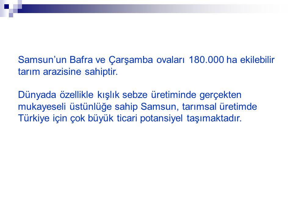 Samsun'un Bafra ve Çarşamba ovaları 180.000 ha ekilebilir tarım arazisine sahiptir.