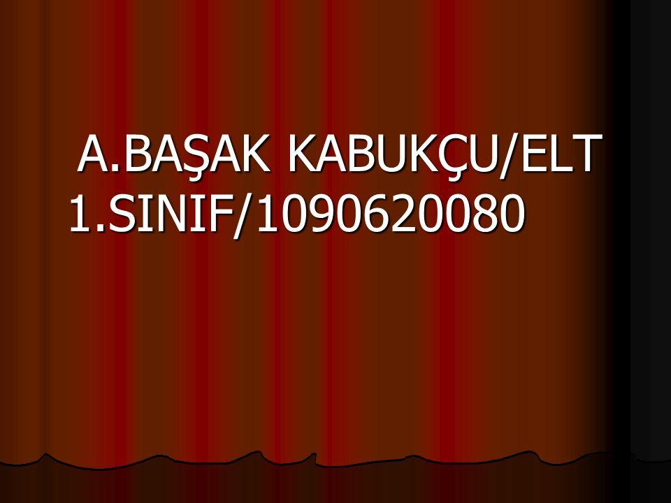 A.BAŞAK KABUKÇU/ELT 1.SINIF/1090620080 A.BAŞAK KABUKÇU/ELT 1.SINIF/1090620080