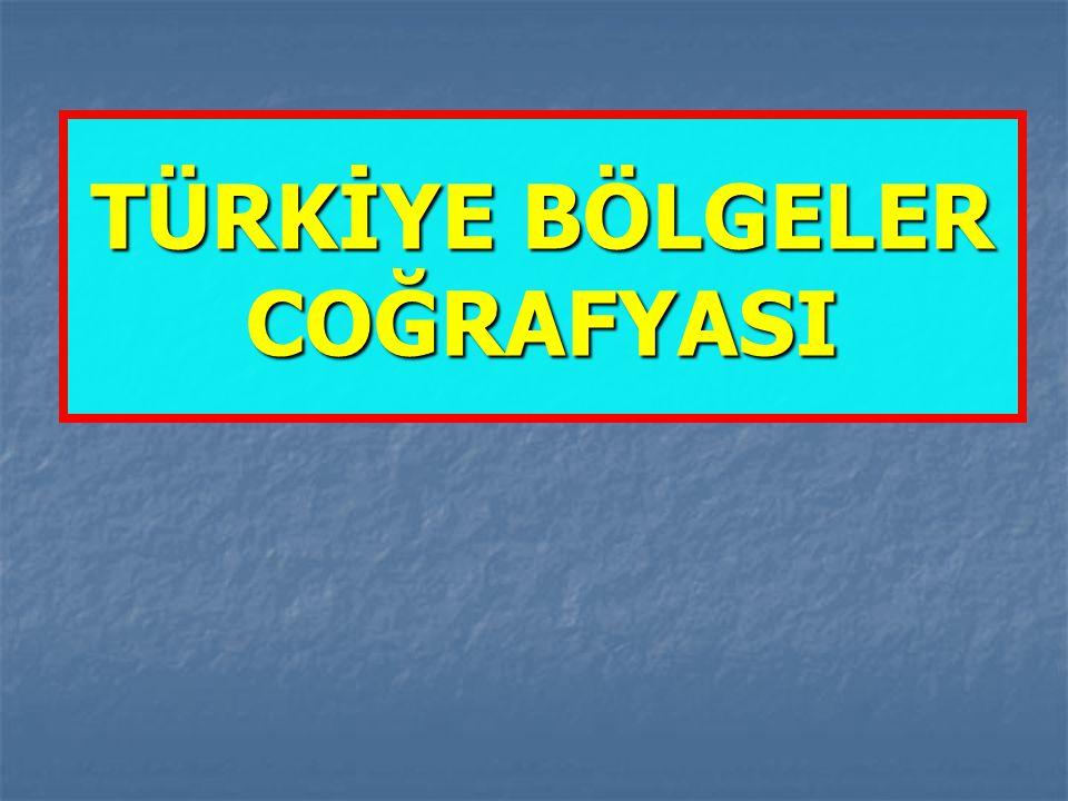Türkiye'de kümes hayvancılığının birinci olduğu yer neden Marmara Bölgesidir.