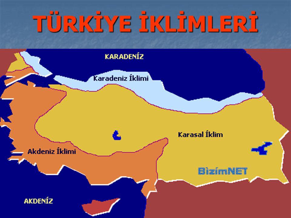 Hangisi Güney Doğu Anadolu'da değildir.A. Diyarbakır B.
