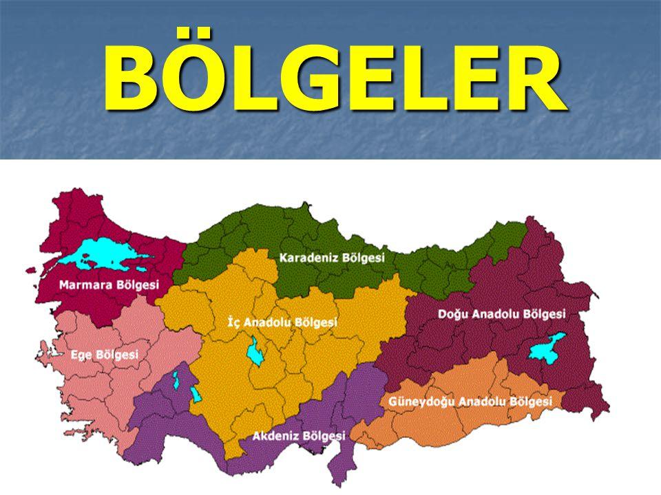 Türkiye'nin en dağlık ve en büyük bölgesi hangisidir.