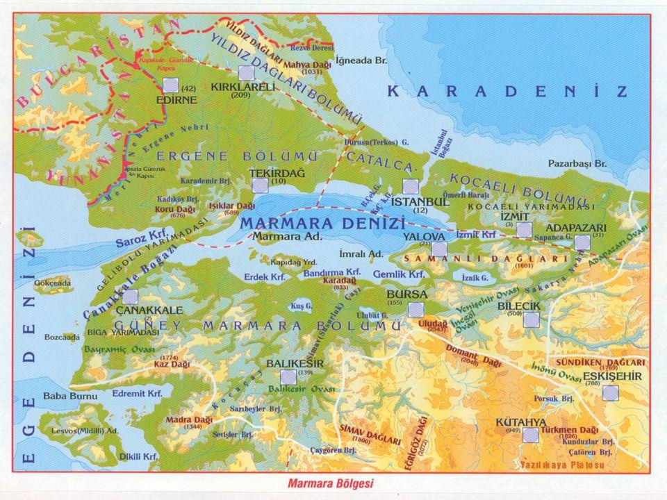 *** Ortalama yükseltinin en az olduğu bölgedir.** Ekili-Dikili arazi oranı %30 ile 1.sıradadır.