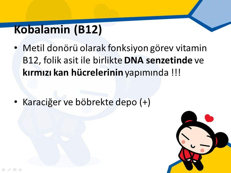 Kobalamin (B12) Metil donörü olarak fonksiyon görev vitamin B12, folik asit ile birlikte DNA senzetinde ve kırmızı kan hücrelerinin yapımında !!.