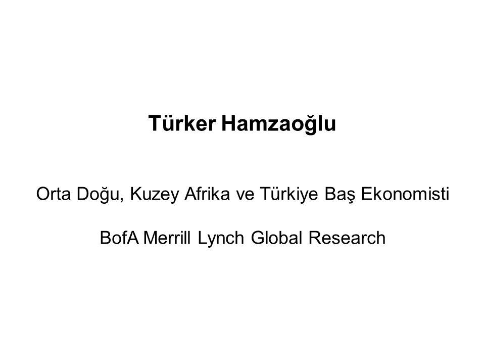 Türker Hamzaoğlu Orta Doğu, Kuzey Afrika ve Türkiye Baş Ekonomisti BofA Merrill Lynch Global Research