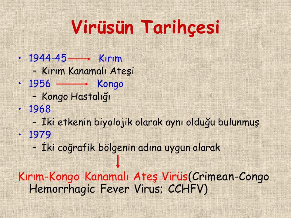 Virüsün Tarihçesi 1944-45 Kırım –Kırım Kanamalı Ateşi 1956 Kongo –Kongo Hastalığı 1968 –İki etkenin biyolojik olarak aynı olduğu bulunmuş 1979 –İki co