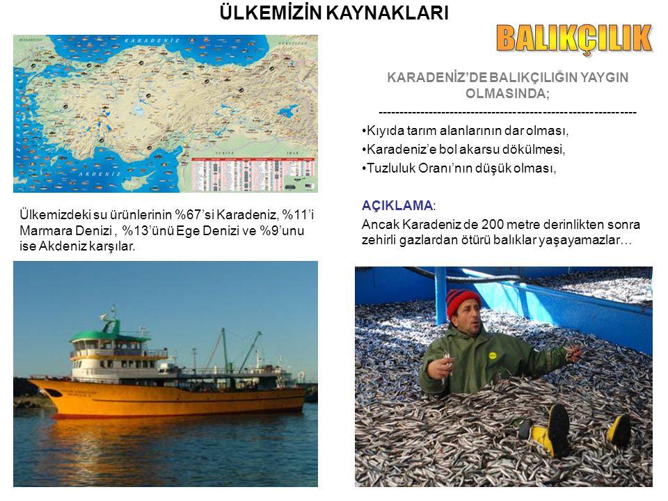 ÜLKEMİZİN KAYNAKLARI Ülkemizdeki su ürünlerinin %67'si Karadeniz, %11'i Marmara Denizi, %13'ünü Ege Denizi ve %9'unu ise Akdeniz karşılar. KARADENİZ'D