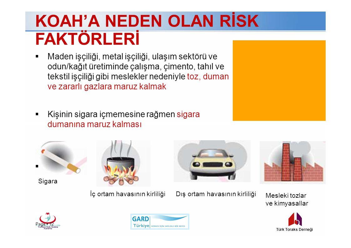 KOAH'A NEDEN OLAN RİSK FAKTÖRLERİ  Maden işçiliği, metal işçiliği, ulaşım sektörü ve odun/kağıt üretiminde çalışma, çimento, tahıl ve tekstil işçiliği gibi meslekler nedeniyle toz, duman ve zararlı gazlara maruz kalmak  Kişinin sigara içmemesine rağmen sigara dumanına maruz kalması Genetik  Sigara İç ortam havasının kirliliği Mesleki tozlar ve kimyasallar Dış ortam havasının kirliliği Page  12 Türk Toraks Derneği