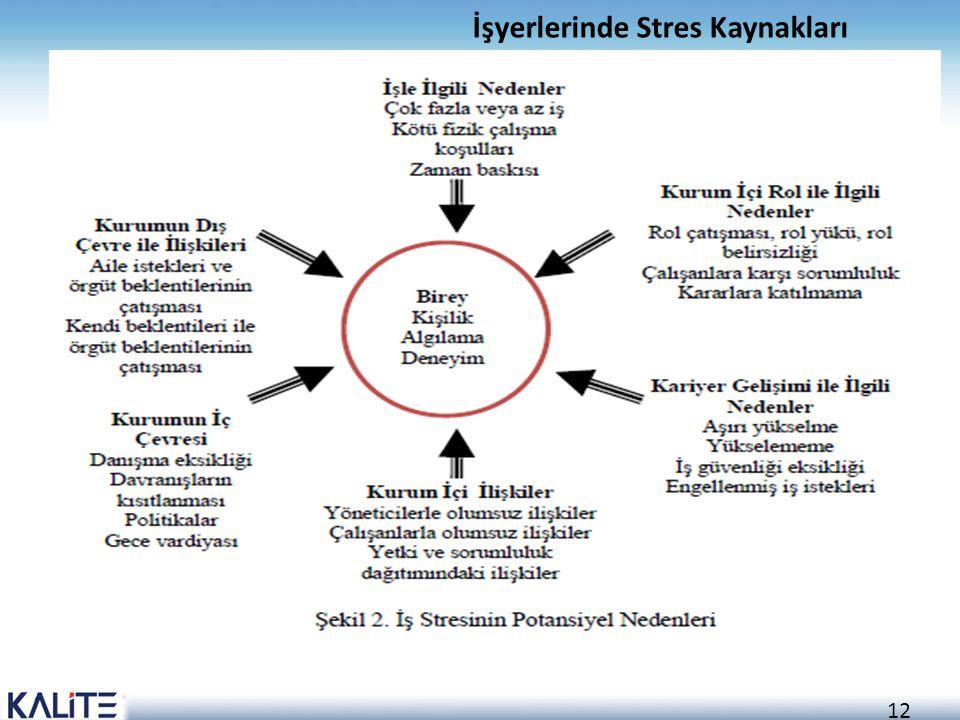 12 İşyerlerinde Stres Kaynakları