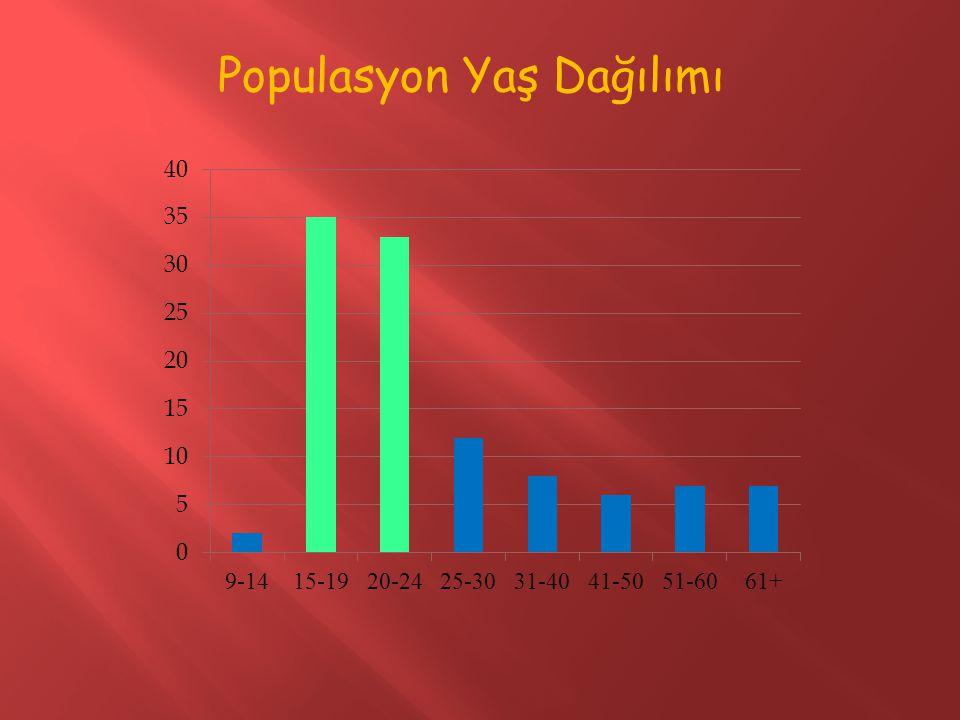 Populasyon Yaş Dağılımı