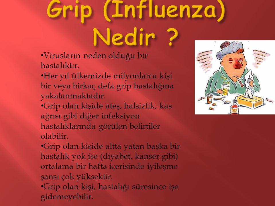Virusların neden olduğu bir hastalıktır. Her yıl ülkemizde milyonlarca kişi bir veya birkaç defa grip hastalığına yakalanmaktadır. Grip olan kişide at