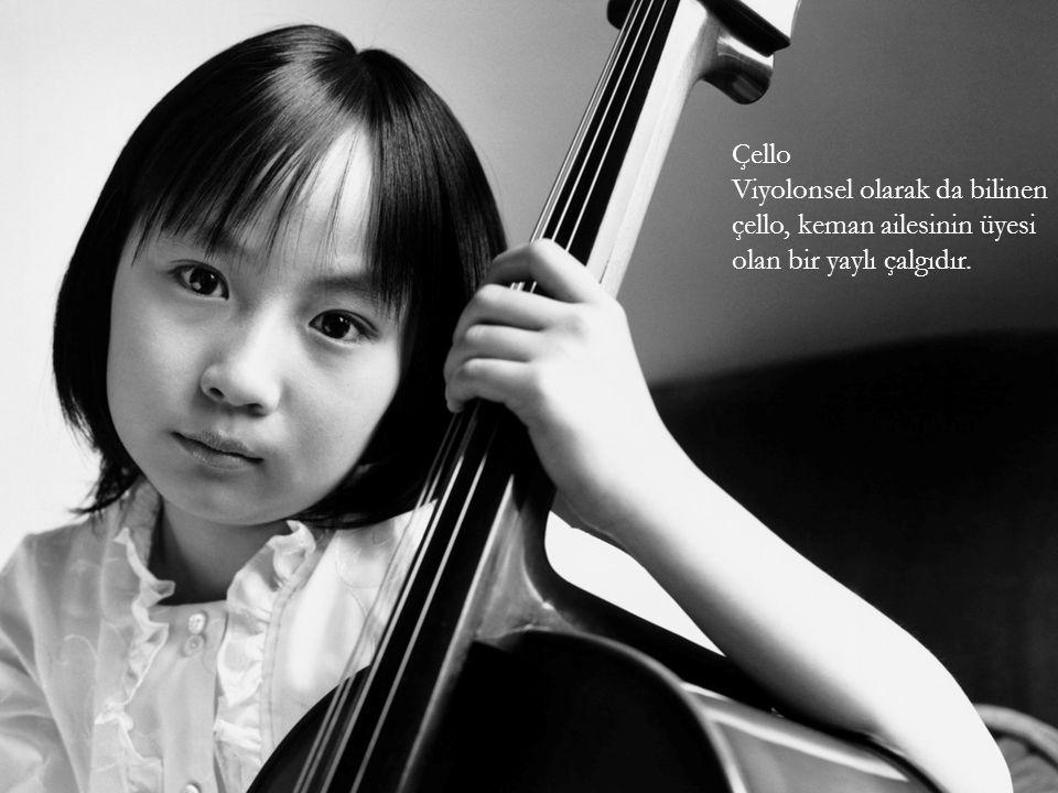 Çello Viyolonsel olarak da bilinen çello, keman ailesinin üyesi olan bir yaylı çalgıdır.