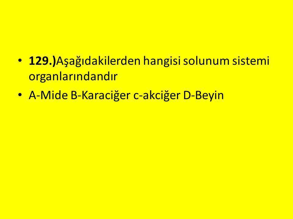 129.)Aşağıdakilerden hangisi solunum sistemi organlarındandır A-Mide B-Karaciğer c-akciğer D-Beyin