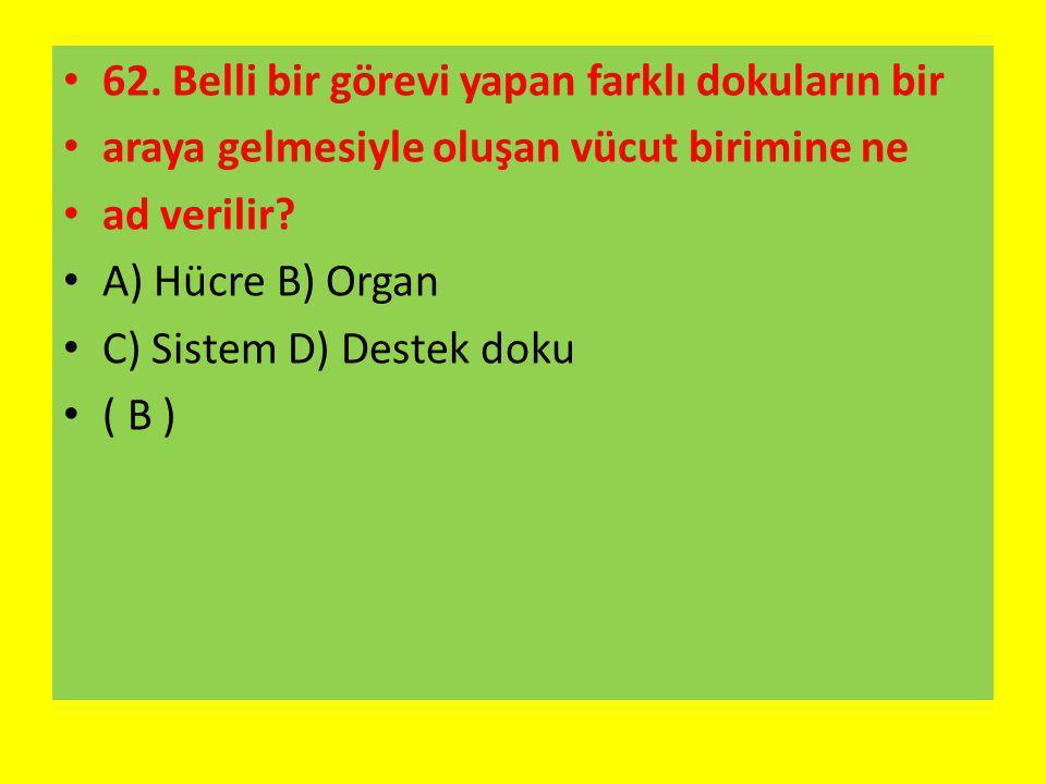 62. Belli bir görevi yapan farklı dokuların bir araya gelmesiyle oluşan vücut birimine ne ad verilir? A) Hücre B) Organ C) Sistem D) Destek doku ( B )