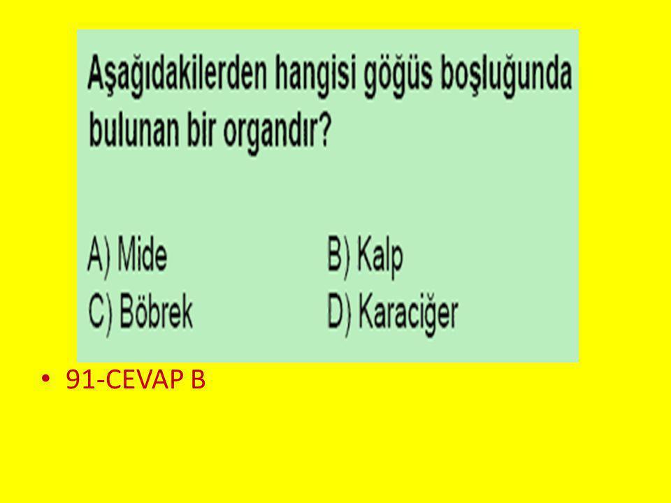 91-CEVAP B Soru 2..