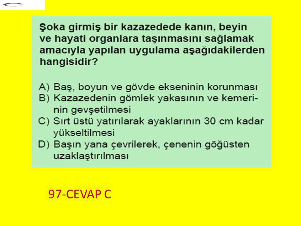97-CEVAP C