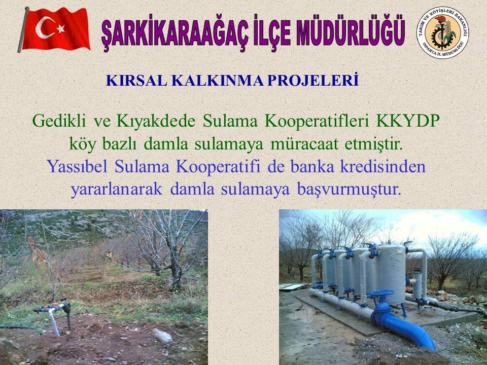 KIRSAL KALKINMA PROJELERİ Gedikli ve Kıyakdede Sulama Kooperatifleri KKYDP köy bazlı damla sulamaya müracaat etmiştir.
