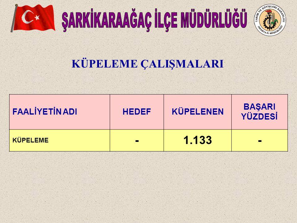FAALİYETİN ADIHEDEFKÜPELENEN BAŞARI YÜZDESİ KÜPELEME -1.133- KÜPELEME ÇALIŞMALARI