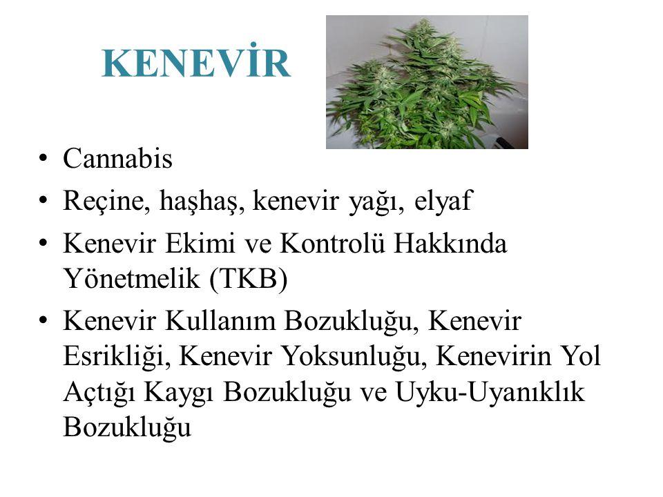 KENEVİR Cannabis Reçine, haşhaş, kenevir yağı, elyaf Kenevir Ekimi ve Kontrolü Hakkında Yönetmelik (TKB) Kenevir Kullanım Bozukluğu, Kenevir Esrikliği