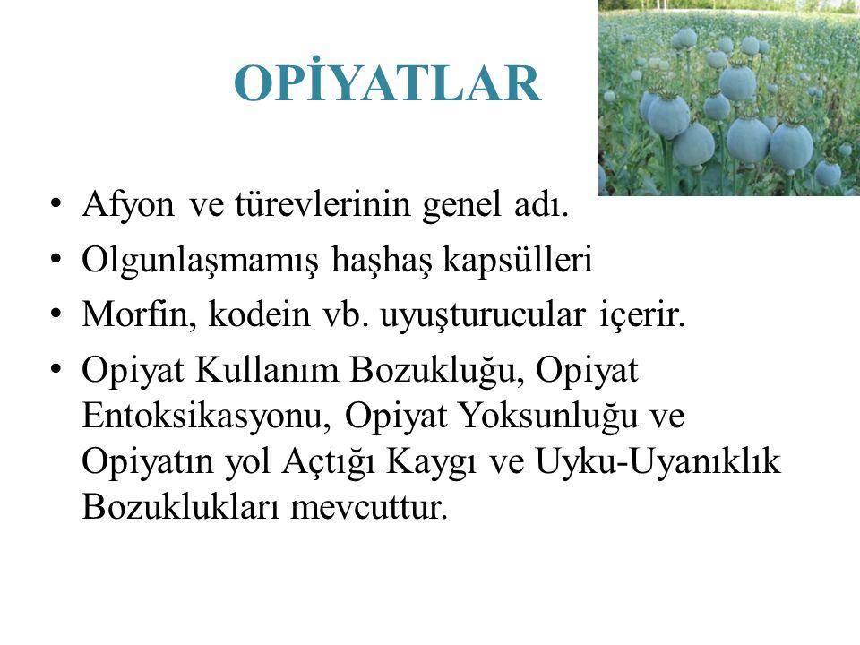 OPİYATLAR Afyon ve türevlerinin genel adı. Olgunlaşmamış haşhaş kapsülleri Morfin, kodein vb. uyuşturucular içerir. Opiyat Kullanım Bozukluğu, Opiyat