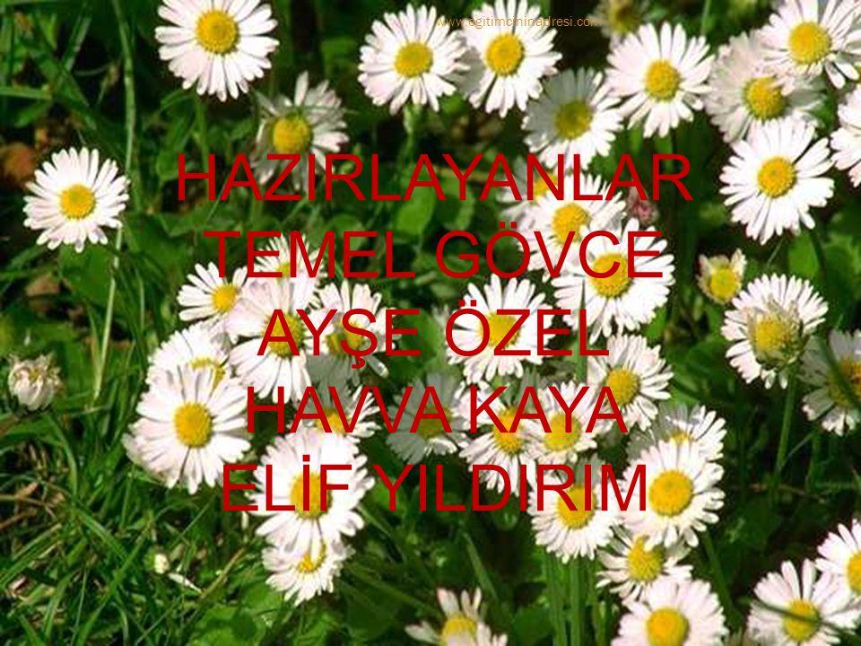 HAZIRLAYANLAR TEMEL GÖVCE AYŞE ÖZEL HAVVA KAYA ELİF YILDIRIM www.egitimcininadresi.com