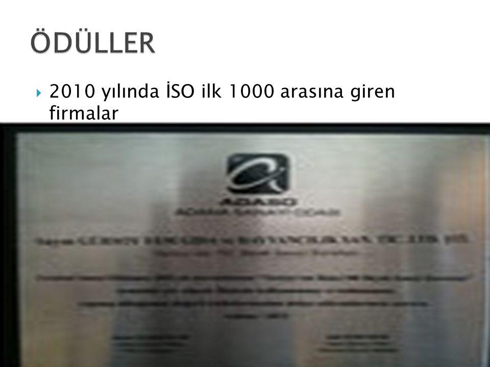  2010 yılında İSO ilk 1000 arasına giren firmalar